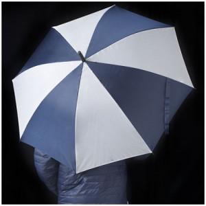 Umbrella-blog 1