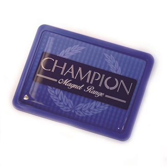 purple champion rectangular magnet