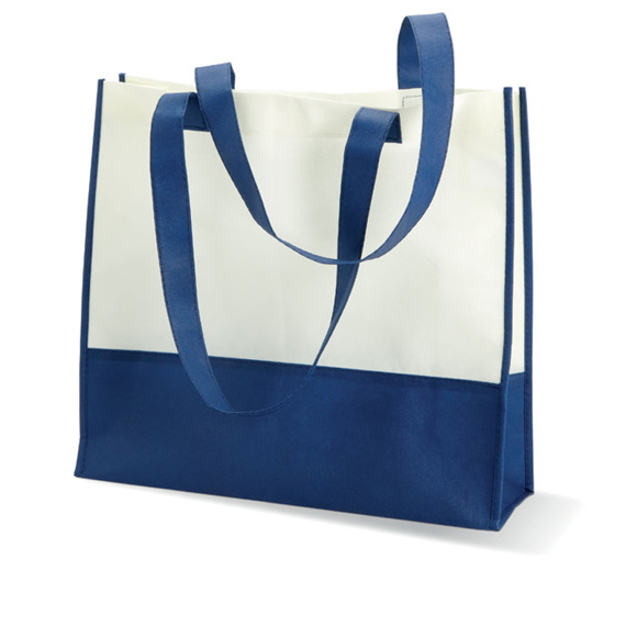 Ladies Beach Bag in blue and white