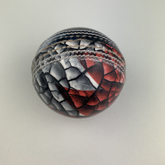 Leather Full Size Cricket Ball Digitally Printed All Over