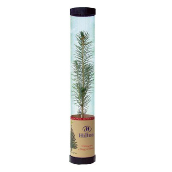 Christmas tree is postal tube printed to label