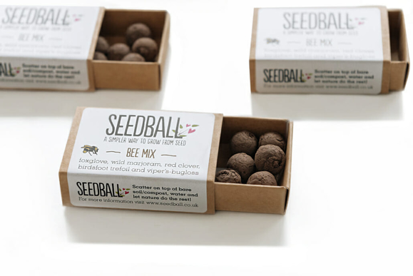 Seed ball match boxes