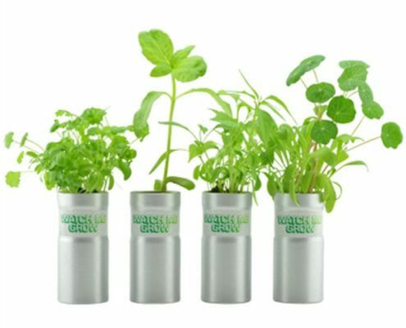 aluminimum tube with seed - growing kit
