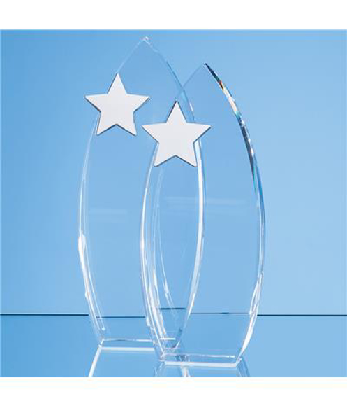 Arch Award with Silver Star