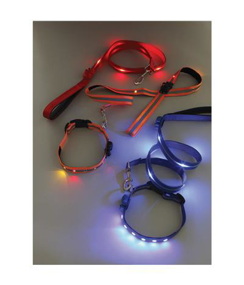 Light Up Dog Lead in red and blue