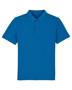 Dedicator Iconic Polo in dark blue