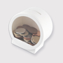 Dome shaped Money box filled with coins which can be seen through the clear window on the front