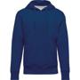 Organic Hoodie in blue