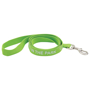 light green polyester dog lead