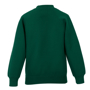 Raglan Sleeve Sweatshirt in green with crew neck