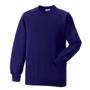 Raglan Sleeve Sweatshirt in purple with crew neck