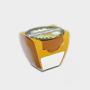 Tiny Terracotta Pot with seeds English daisy