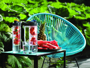 outdoor scene of water bottles with fruit infusers and black lids