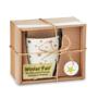 Star Christmas Mug in carton box and PVC sleeve and ribbon with label
